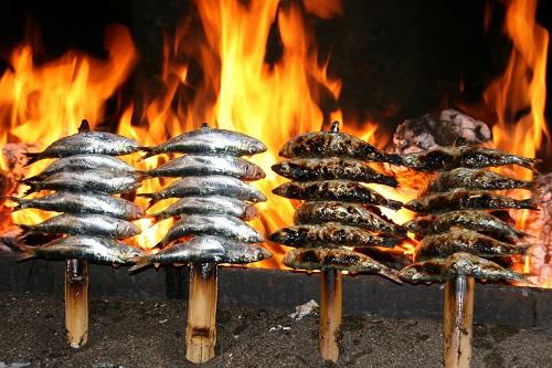 Gastronomy Sardines