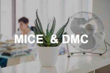 MICE ? DMC ? que hacemos ?